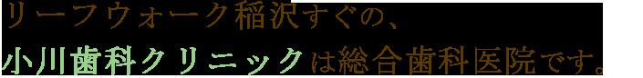 リーフウォーク稲沢すぐの小川歯科クリニックは総合歯科医院です。